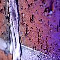 Purple Damage. by Jenny Wertheimer