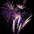 Purple Firework by Steev Stamford