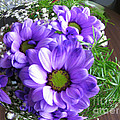Purple Flowers In The Bubble by Ausra Huntington nee Paulauskaite