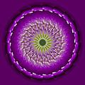 Purple Green Mandala by Bill Barber