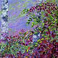 Purple Haze by Joanne Smoley