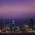 Purple Haze by Michael Merry