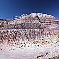 Purple Mountain Majesty by Adam Jewell
