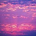 Purple Sky  by Kevin Bone