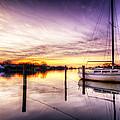 Purple Sunrise by Vicki Jauron