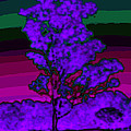 Purple Tree And Rainbow Sky by Diana Haronis
