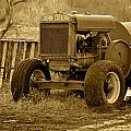 Put Out But Not Abandoned In Sepia by JD Grimes