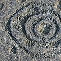 Pu'u Loa Petroglyphs by Sami Sarkis