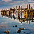 Pylons In Humboldt Bay by Greg Nyquist