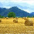 Pyrenees - France by Franck Guarinos