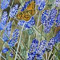 Queen Of Spain Fritillary And Lavender by Marty Bielefeldt