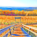 Queen Wilhelmina State Park by Douglas Barnard