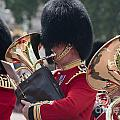 Queens Guards Band by Andrew  Michael