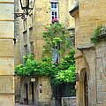 Quiet Street In Sarlat by Greg Matchick