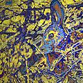 Rabbit In Brush by Belinda Greb