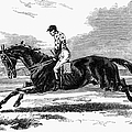 Race Horse, 1857 by Granger