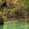 Radovna River In Vintgar Gorge Slovenia by Greg Matchick