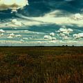 Raging Midnight Field by Bill Tiepelman