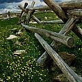 Rail Fence No.1812 by Randall Nyhof