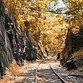 Rail Road Cut by Bill Cannon