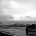 Rain And Storm by Kaye Menner