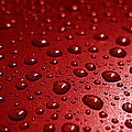 Rain Drops Bloody Red  by Ausra Huntington nee Paulauskaite