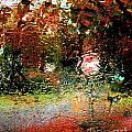 Rain  by Lizi Beard-Ward