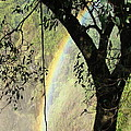 Rainbow At Victoria Falls by Donna Barker