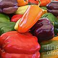 Rainbow Bells by Susan Herber