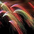 Rainbow Burst by Elizabeth Hart