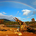 Rainbow Over Affric by Gavin Macrae