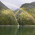 Rainbow Over Forest, Endicott Arm by Konrad Wothe