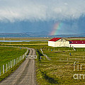 Rainbow Over Iceland Farm by Gregory Dyer
