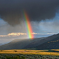 Rainbow Over Lamar Valley by Yvonne Baur