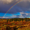 Rainbow Over Rithets Bog by Louise Heusinkveld