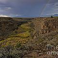 Rainbow Over The Rio Pueblo by Ron Cline