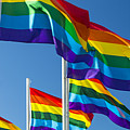 Rainbow Pride Flags by Stuart Dee