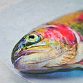 Rainbow Trout On Plate by Image by Catherine MacBride