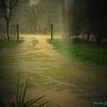 Rainy Daze Again by Joyce Dickens