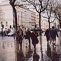 Rainy Sunday On Cromwell Road In London England by Katherine Shemeld