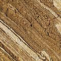 Rajasthan Sandstone Marble Streaks by Kantilal Patel