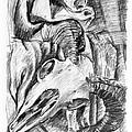 Ram Skull Still-life by Adam Long