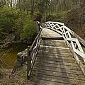 Ramsey Creek Scene 9 by John Brueske