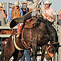 Ranch Bronc Rider by Rachelle Rice