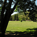 Rancho Laguna Park by Ken Young