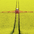 Rape Seed Spraying by JT images