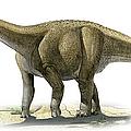Rapetosaurus Krausei, A Prehistoric Era by Sergey Krasovskiy