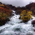 Rapid Waters by Carlos Caetano