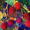 Raspberries by Barbara Berney