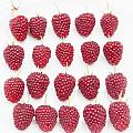 Raspberry Formation by Maj Seda